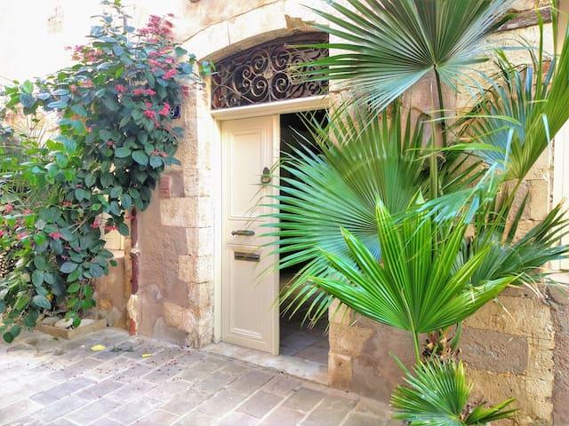 Luxurious historical villa