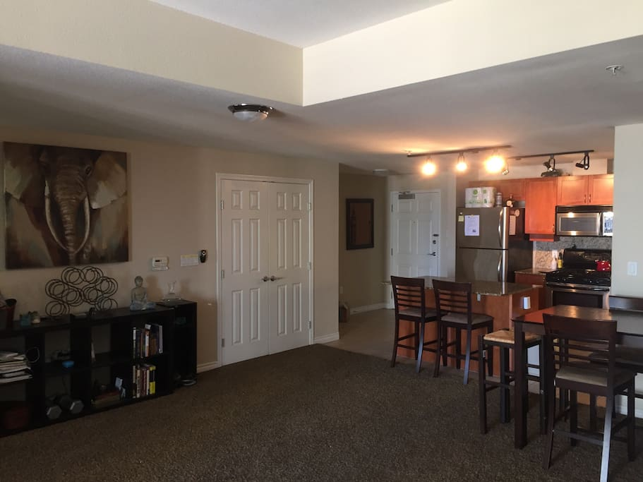 Massive Living Room and Open Kitchen Floor Plan