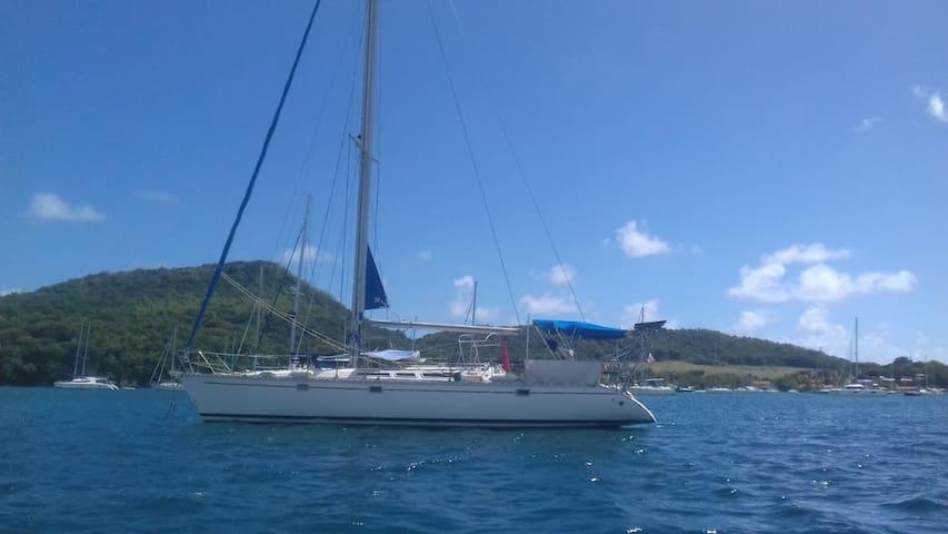 Voilier d'hôte Sun Kiss 47 cabine 2 Martinique
