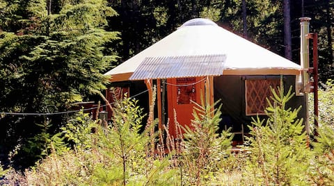 24' Yurt with HOT TUB  - 1 mile to Mt Rainier!