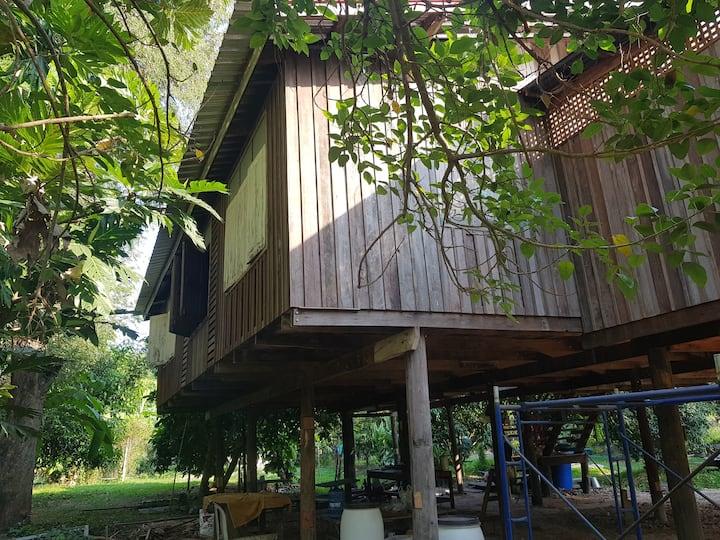 Baanthonglang Homestay (บ้านทองหลางโฮมสเตย์)