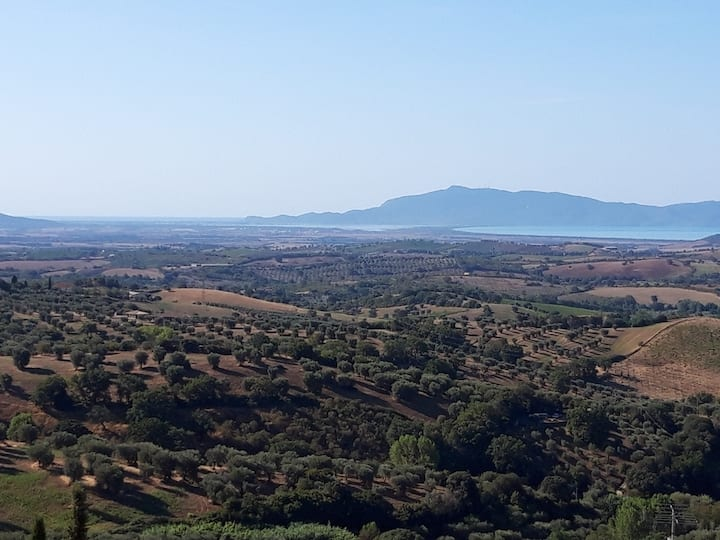home Montiano maremma tuscany IT: a view to nature