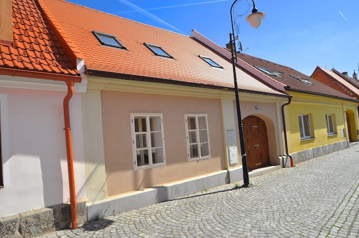 City apartment for 9 persons in Blatná R79330