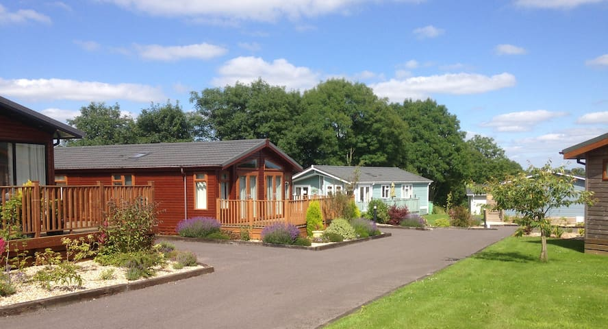 2 Bedroom Deluxe Lodge at Blossom Hill - Honiton - Bungalo