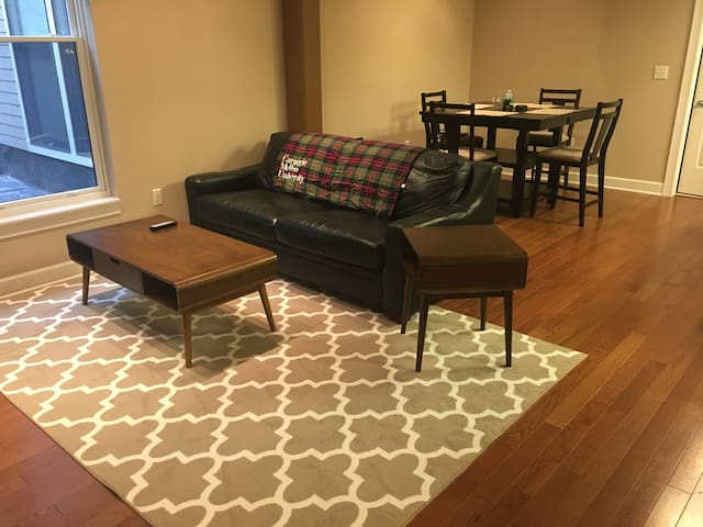 In the heart of Armory Sq. in downtown Syracuse - Siracusa - Apartamento