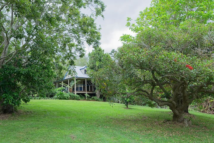 Jacaranda Cottages Maleny (Witta) - The Chalet