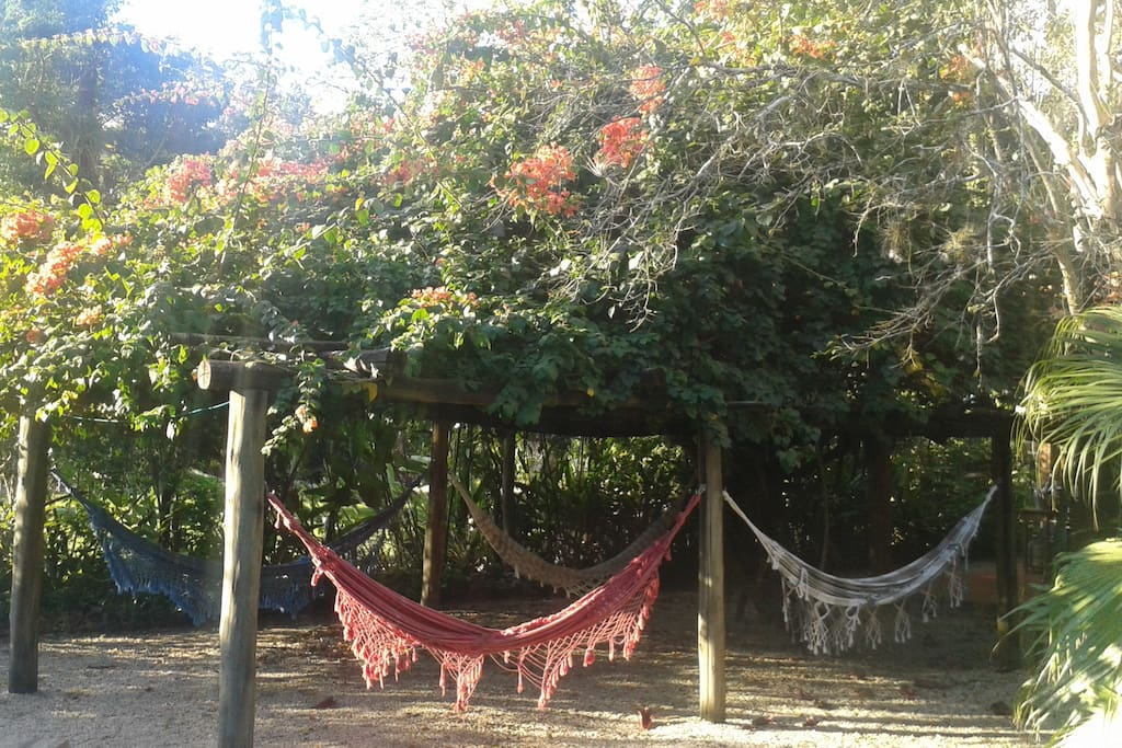 Hammock, chill out area