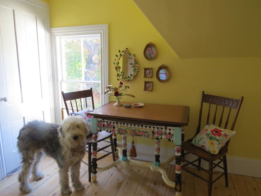 Kitchenette and resident Old English Sheepdog Welcome Committee