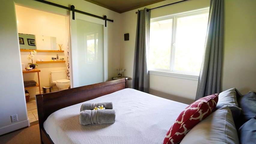 your room with Queen size bed and direct access to your private Bathroom (Barn door with privacy glass)