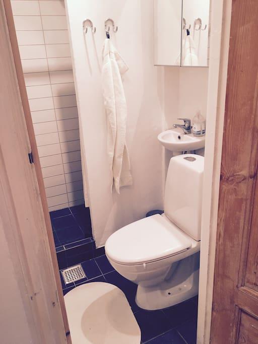 Fint københavnerbadværelse med seperat bruser