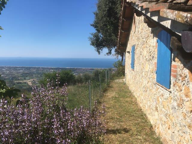 incantevole rustico vista mare - Capezzano - House
