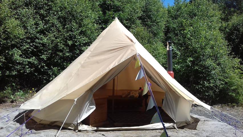 Lovely Goshawk Bell Tent