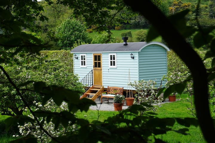 Little Orchard Shepherds Hut @ Nutgrove House