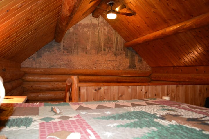 Cabin in The Wildwood - Chehalis - House