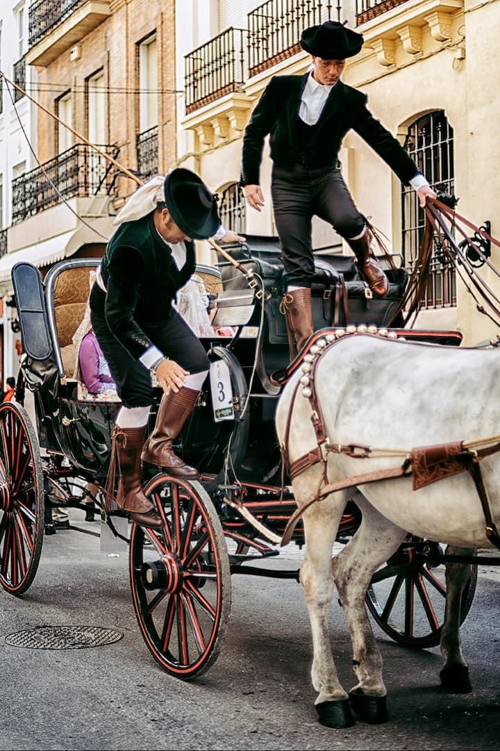 Exhibición de enganches de caballo