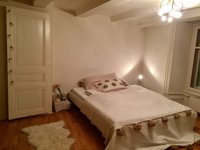Charming apartment in old town - Neuchâtel - Daire