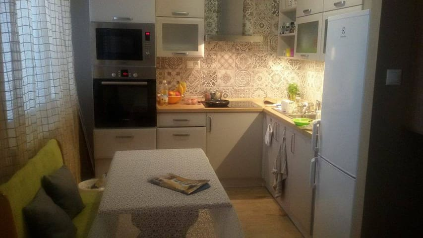 Apartment in the center of Teplice