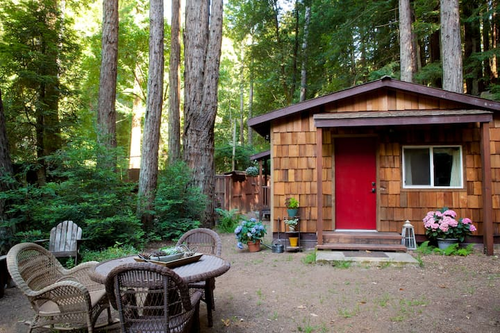 Serene Redwood Haven in Big Sur