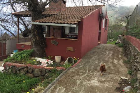 2 bed, upper floor in country house with parking - La Orotava - Haus
