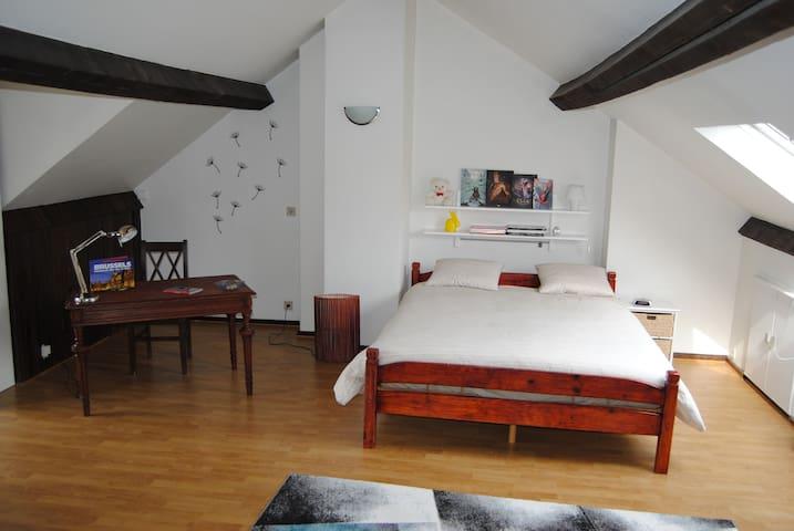 Spacious room - Koekelberg - Appartement