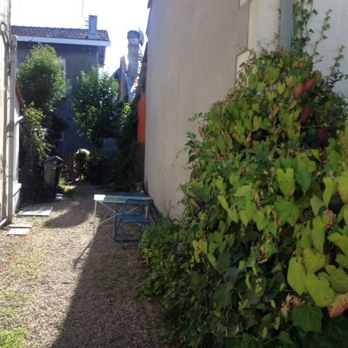 Jardinet extérieur pour profiter d'une cour ombragée