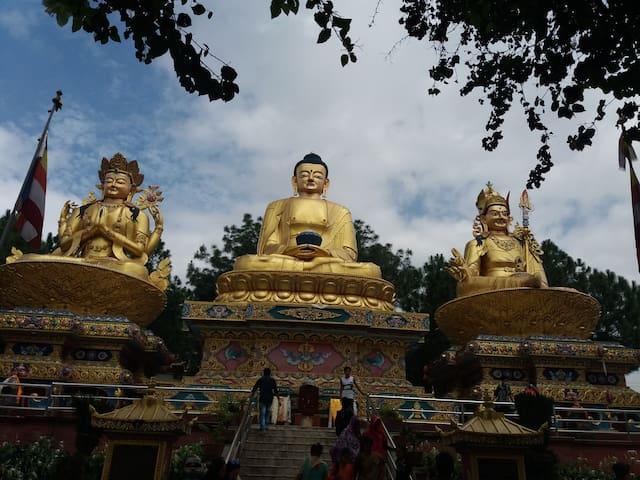 Naehe Buddha Park, Swayambhu, Blick ins Gruene
