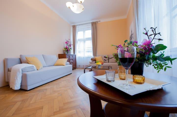 3 Big bedrooms in Old Town #B6 - Kraków - Leilighet