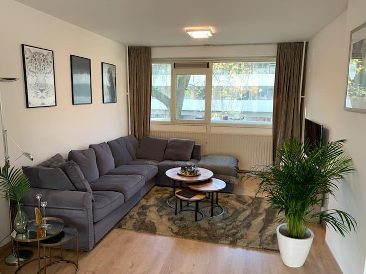 Modern Apartment in Amsterdam