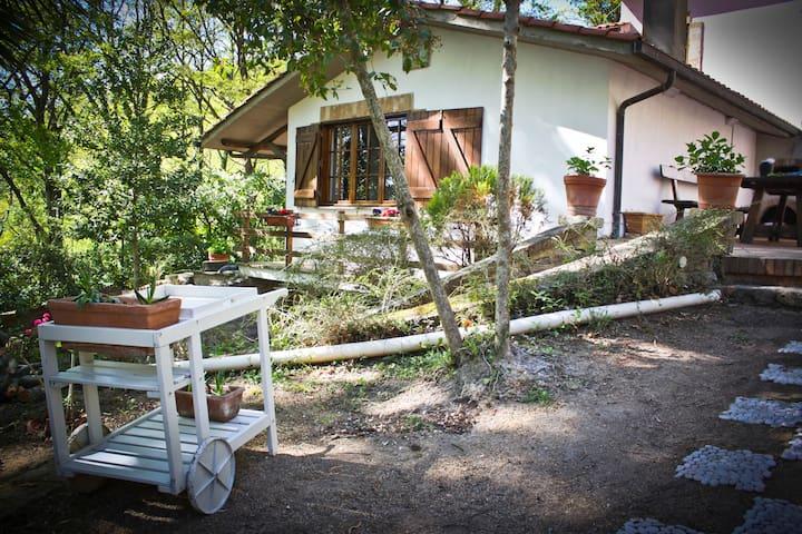 b&b L'Agrifoglio*Villa Francesca - Tolfa