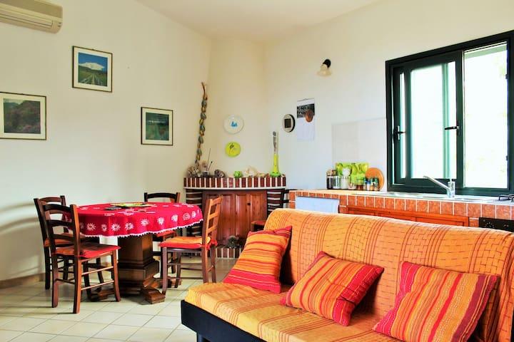 Grazioso appartamento vista mare - Paduledda