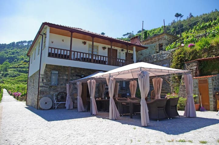 Villa with 4 bedrooms in Lamego, with wonderful mountain view, private pool, enclosed garden - 120 km from the beach