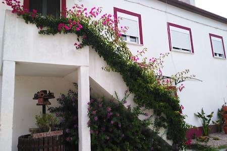 Gameiro House