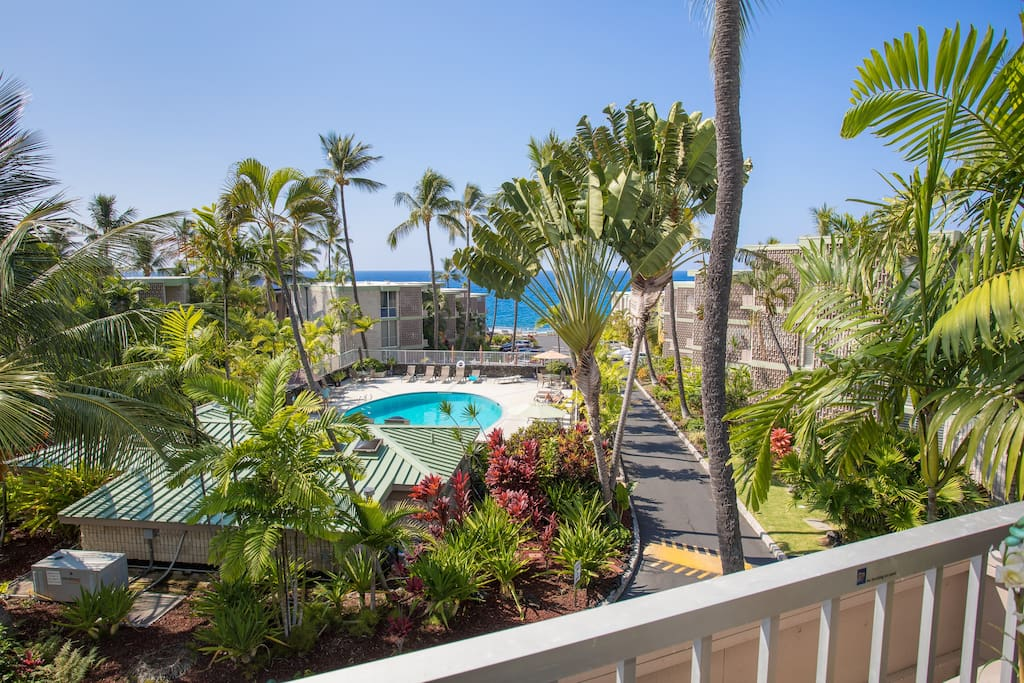From the Lanai overlooking the pool and ocean.