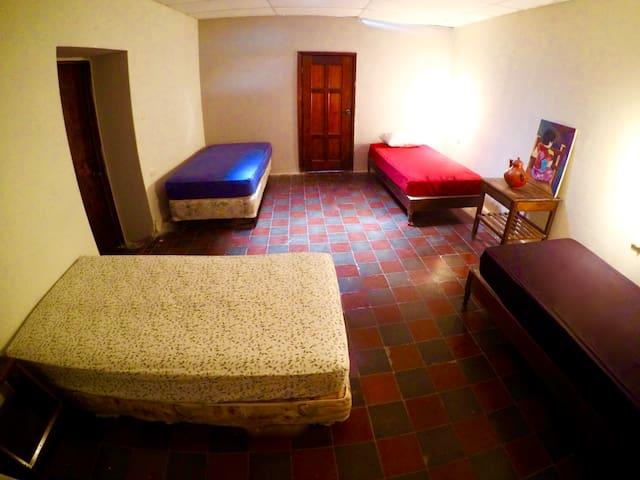 Single bed / Shared dorm
