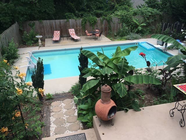 Tropical Oasis in West Asheville