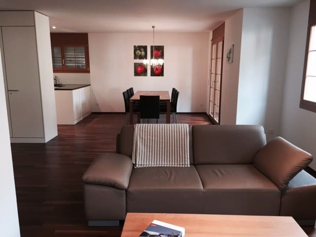 Very nice and new 2 bedroom apartment in the Village of Flims - Flims - Byt