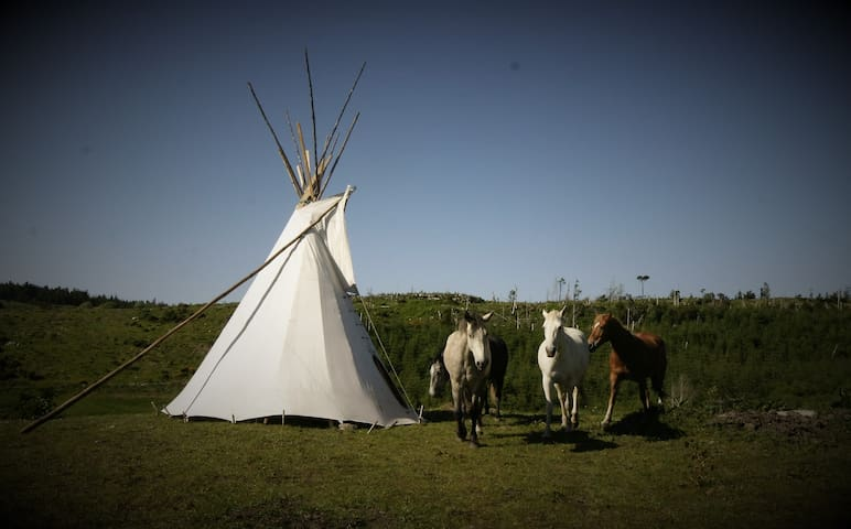 Little Tipi on the hills of Donegal-Farmstay IIII - Ballyshannon - Tipi