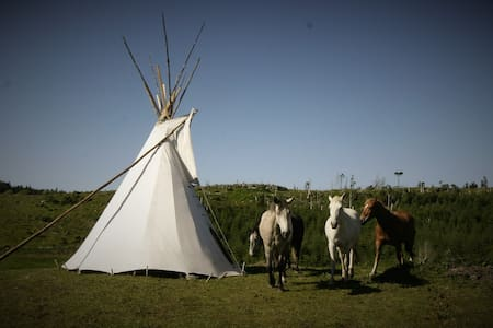 Little Tipi on the hills of Donegal-Farmstay IIII - Ballyshannon - 圓錐形帳篷