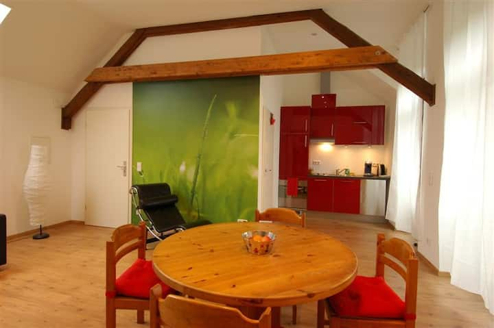 Friendly apartment in old manor house