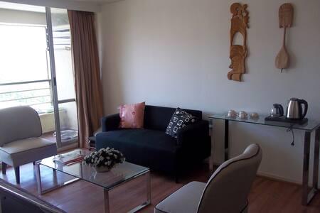 Acogedor Departamento - Cosy Apartment - Santiago