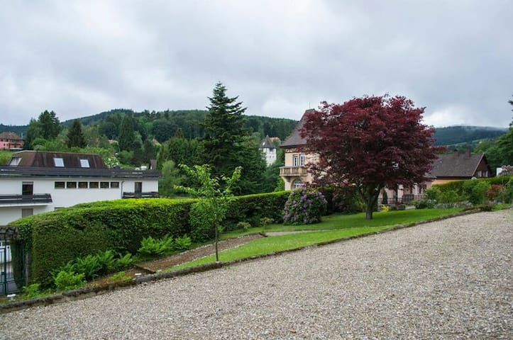 Suitable for travelers - Heinsberg - Apartamento