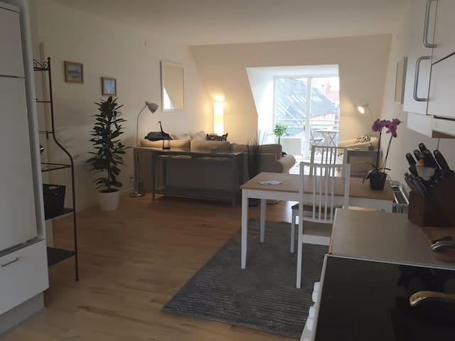 Bright & Central Vejle Apartment - Vejle - Appartement