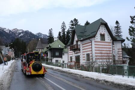 Mountain View Villa - Sinaia