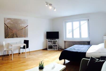 Gemütliche 1-Zimmerwohnung mit WLAN/TV - Glattbrugg - 公寓