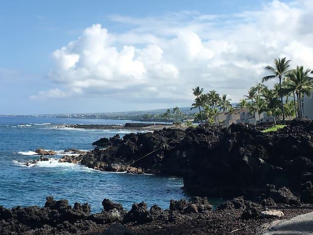 Tropical Living in Oceanfront Resort 31