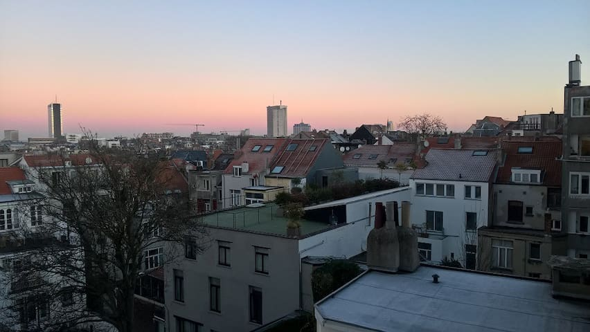 Nice 2 BDR apartment- fully furnished near Louise