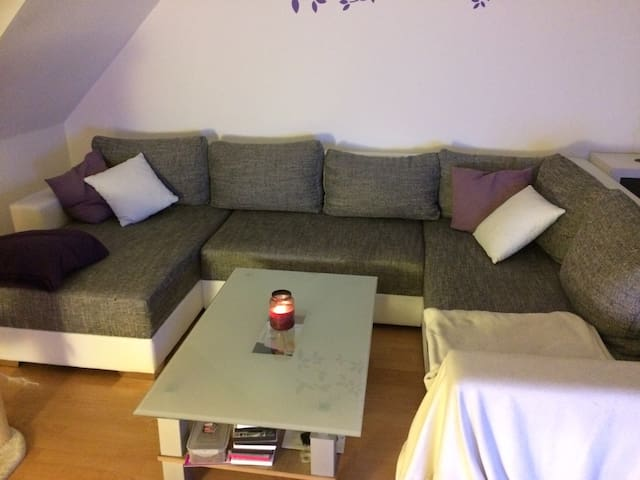 Nice couch in beautiful franconian countryside - Schwanstetten - Apartemen