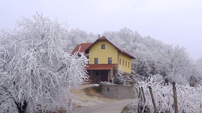 McCutter's Organic Residency - Čentiba - Apartment