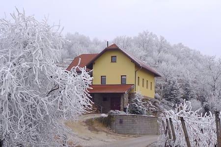 McCutter's Organic Residency - Čentiba