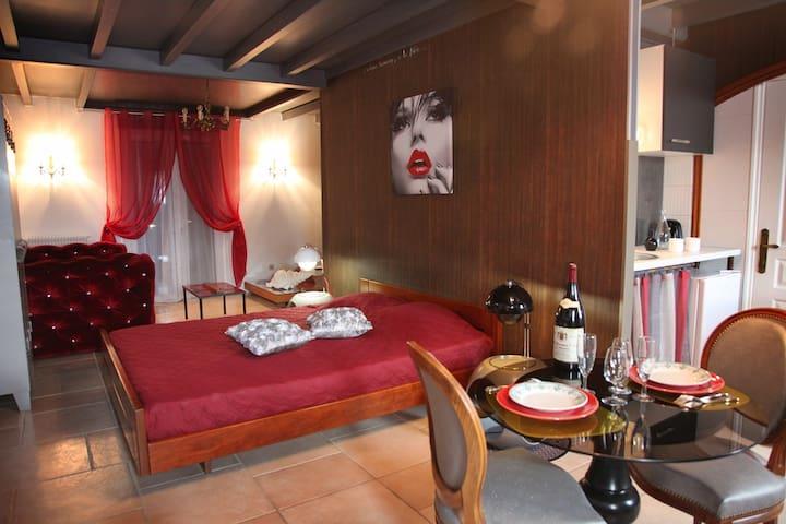 VILLA OLGEA un amour de studio aux portes de Dijon